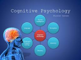 Cognitive Psychology II